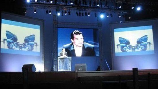 Экраны для шоу-программ, концертов